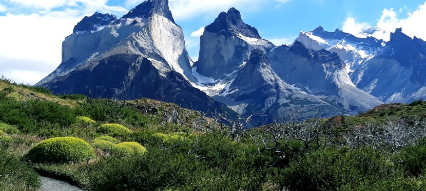 Día 9: Torres delPaine