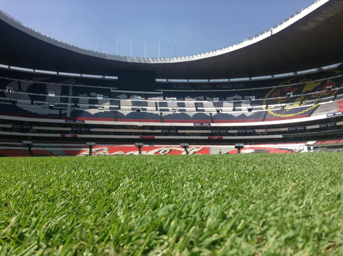 Día 4: Estadio Azteca, Xochimilco y regreso aBogotá